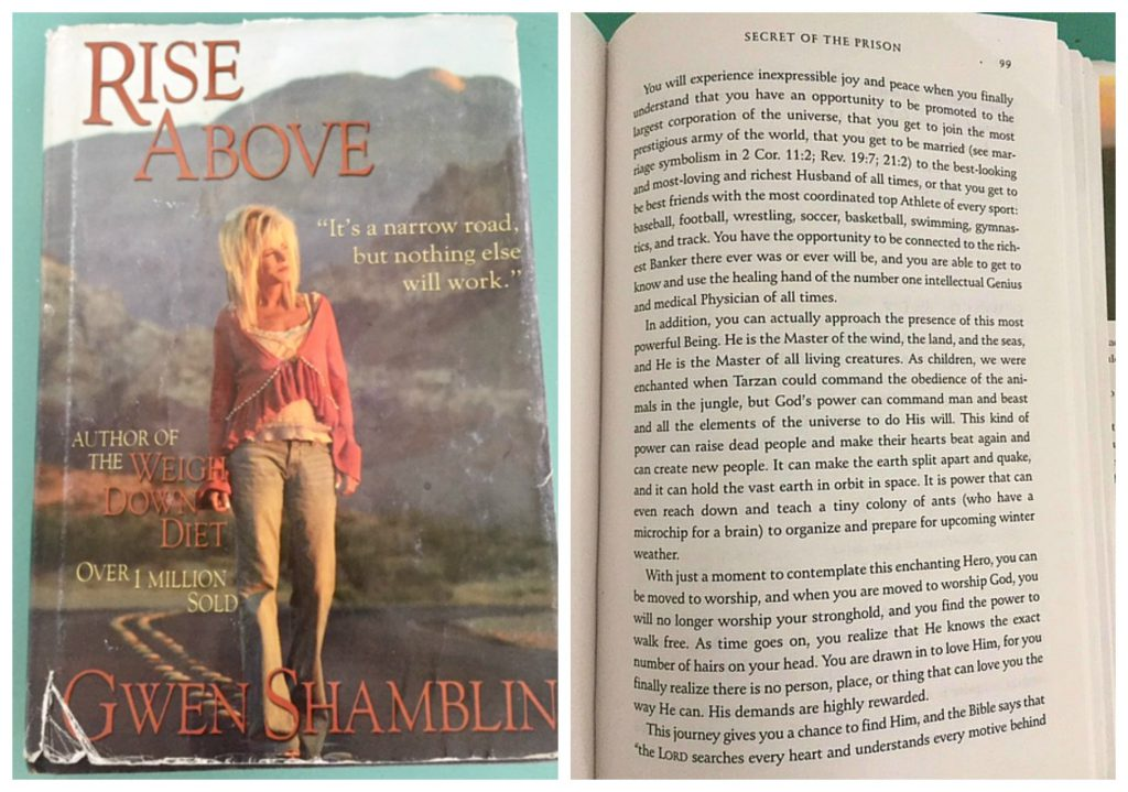 Rise Above Gwen Shamblin